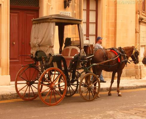 Traditional Maltese Horse Drawn Carraige (Karrozzin)